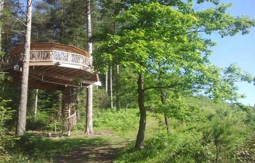 Tree Cabins Asturias