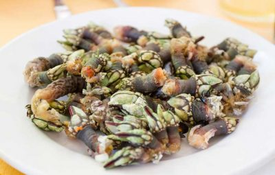 Galician Goose Barnacles - Percebes