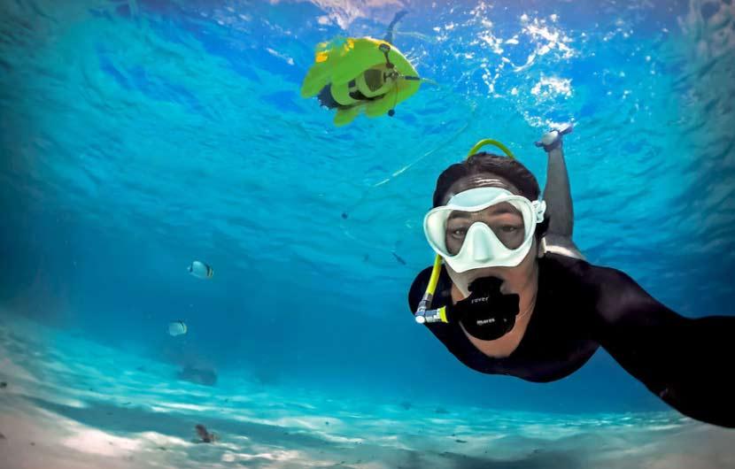 Diving Lobos Island