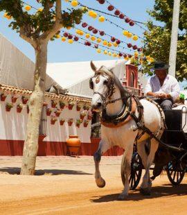 Festivals Spain