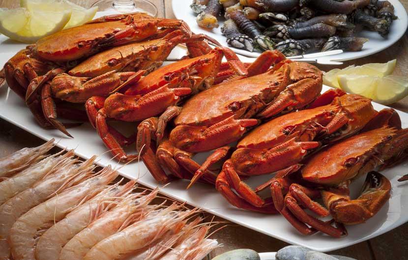 Velvet Crabs from Spain