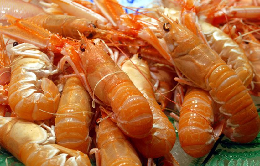 Cigalas Seafood - Dublin Bay Prawn