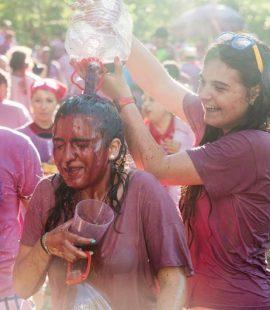 Festivals Rioja Wine