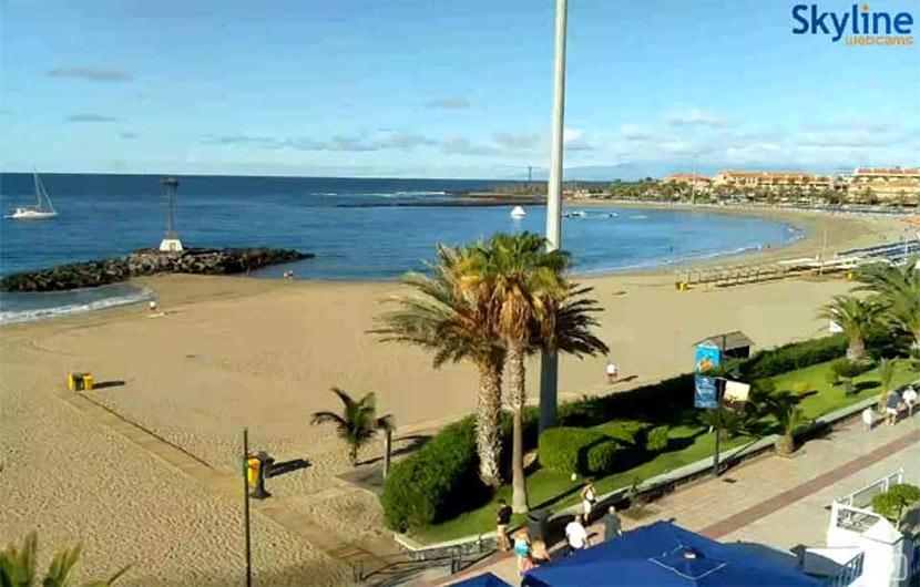 Live Web Tenerife