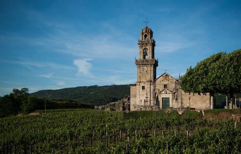 Ribeiro Vineyards Galicia