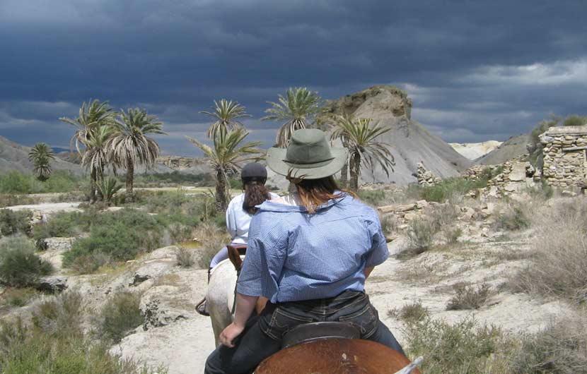 Horse Riding in the Tabernas Desert