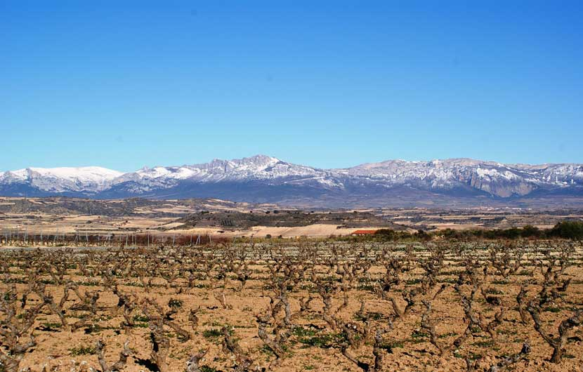 Logrono Spain